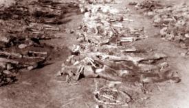Ανασκαφή και προσπάθεια αναγνώρισης των θυμάτων της Σφαγής στον Μελιγαλά.
